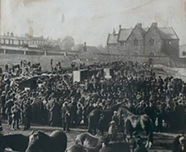 Cockermouth Horse Sale, Fairfield, 1906